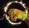 Цирки в Якшур-Бодье